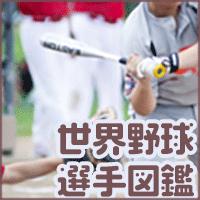 世界野球選手図鑑(540円コース)