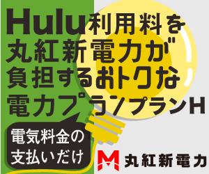 【丸紅新電力】「プランH」電力切り替え